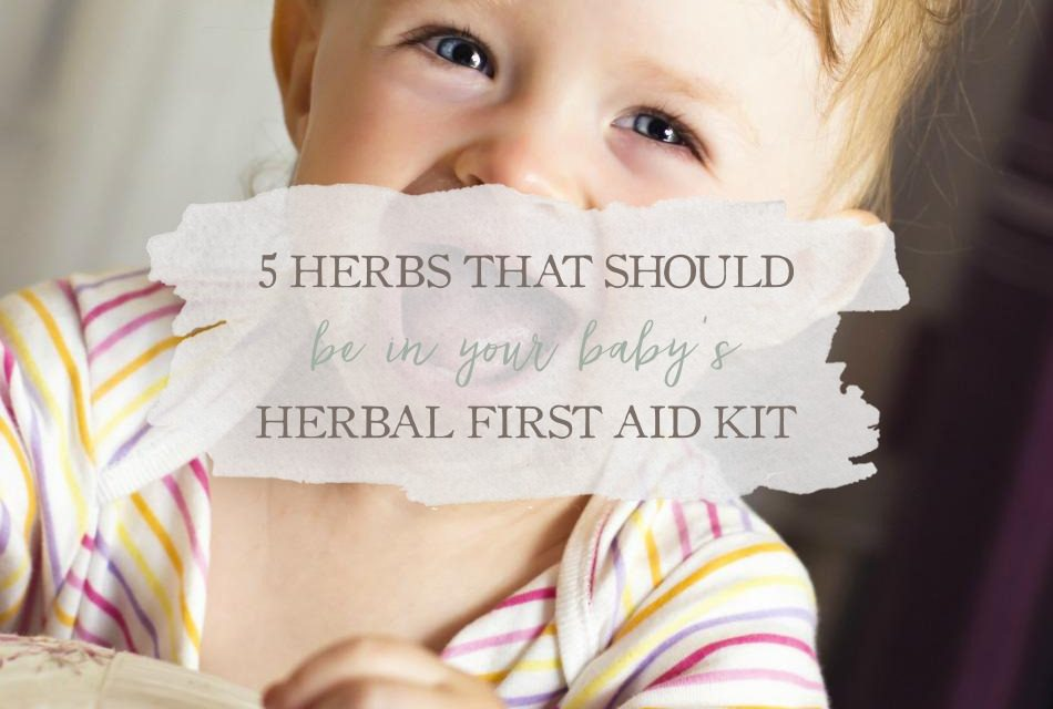 5 Herbs That Should Be In Your Baby's Herbal First Aid Kit