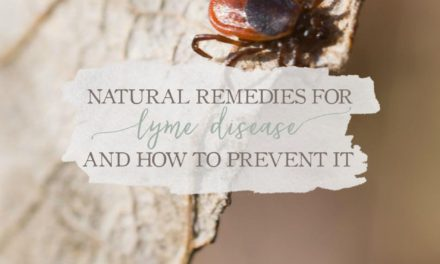 Natural Remedies For Lyme Disease and How to Prevent it