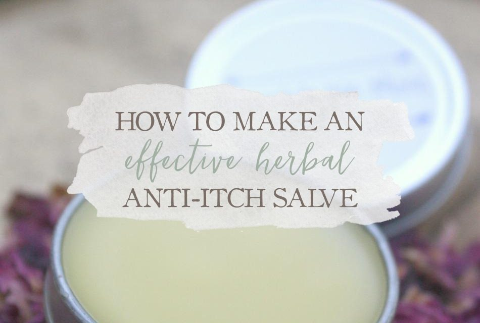 How To Make An Effective Herbal Anti-Itch Salve