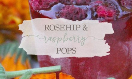 Rose Hip and Raspberry Popsicles