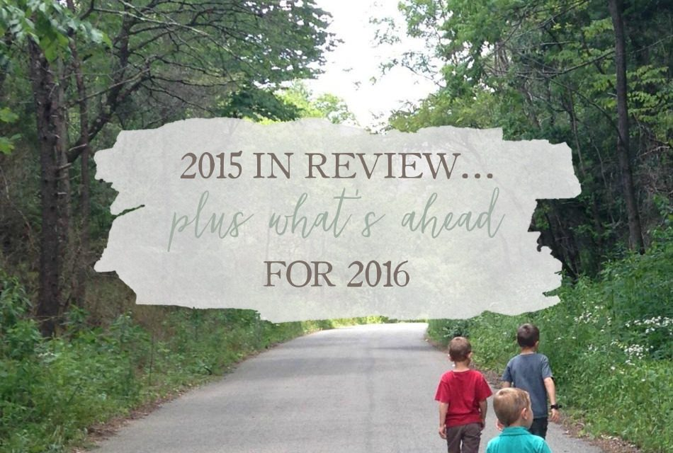 2015 In Review… Plus What's Ahead For 2016