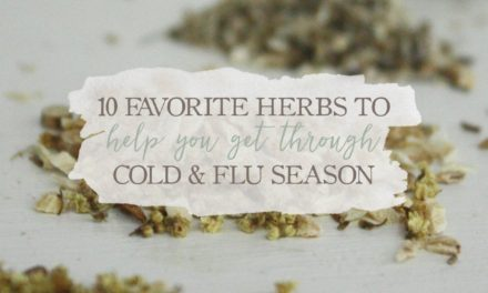 10 Favorite Herbs To Help You Get Through Cold & Flu Season