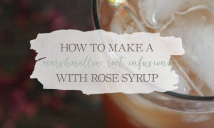 How To Make A Marshmallow Root Infusion With Rose Syrup