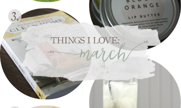 Things I Love: March 2016