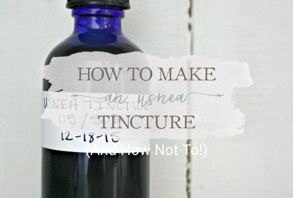 How To Make An Usnea Tincture (And How Not To)
