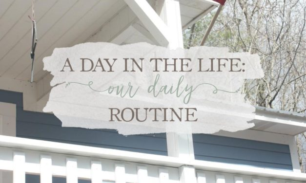 A Day In The Life: Our Daily Routine