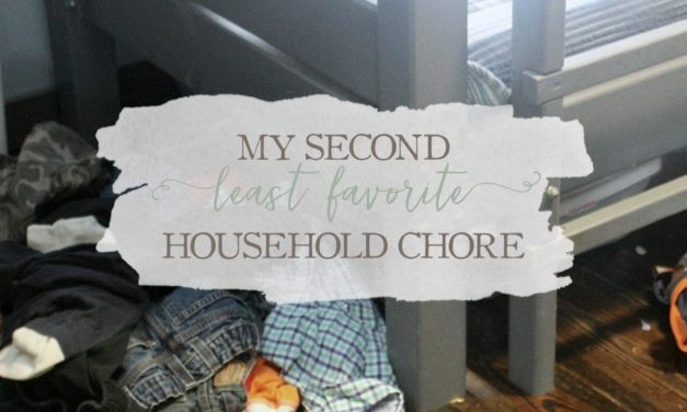 My Second Least-Favorite Household Chore