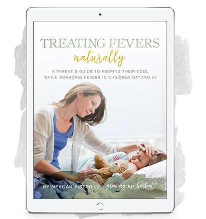 TreatingFeversNaturallyEbook_ipad