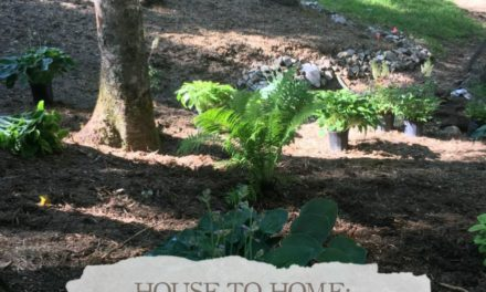 House To Home: Landscaping The Mountain