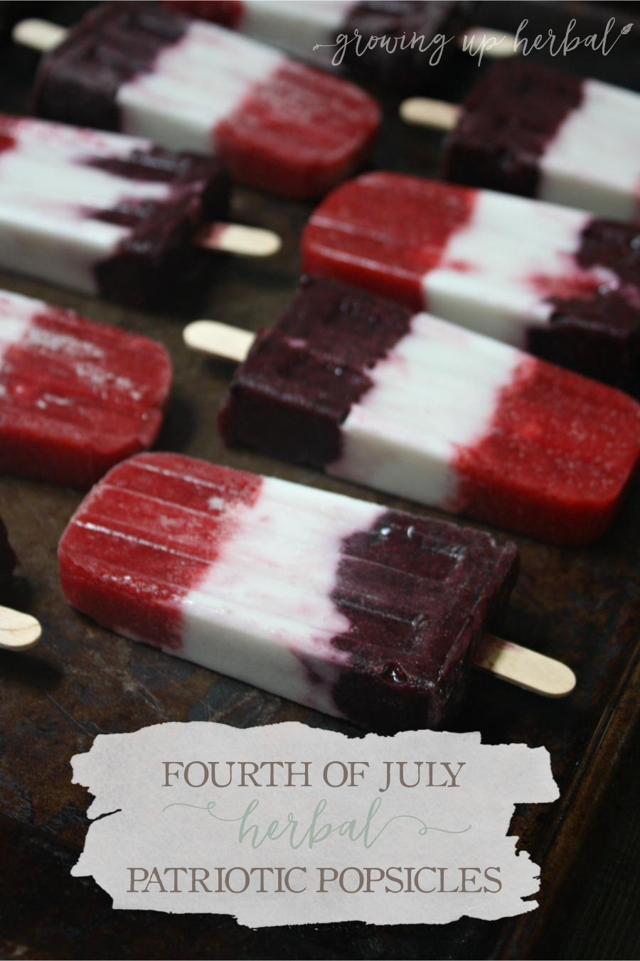 Fourth of July Herbal Patriotic Popsicles (Sugar-Free)   Growing Up Herbal   Make these delicious, healthy, sugar-free herbal patriotic popsicles for your 4th of July celebration!