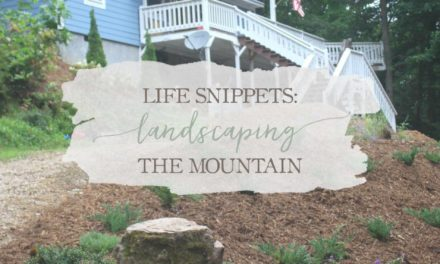 Life Snippets: Landscaping The Mountain (Video)