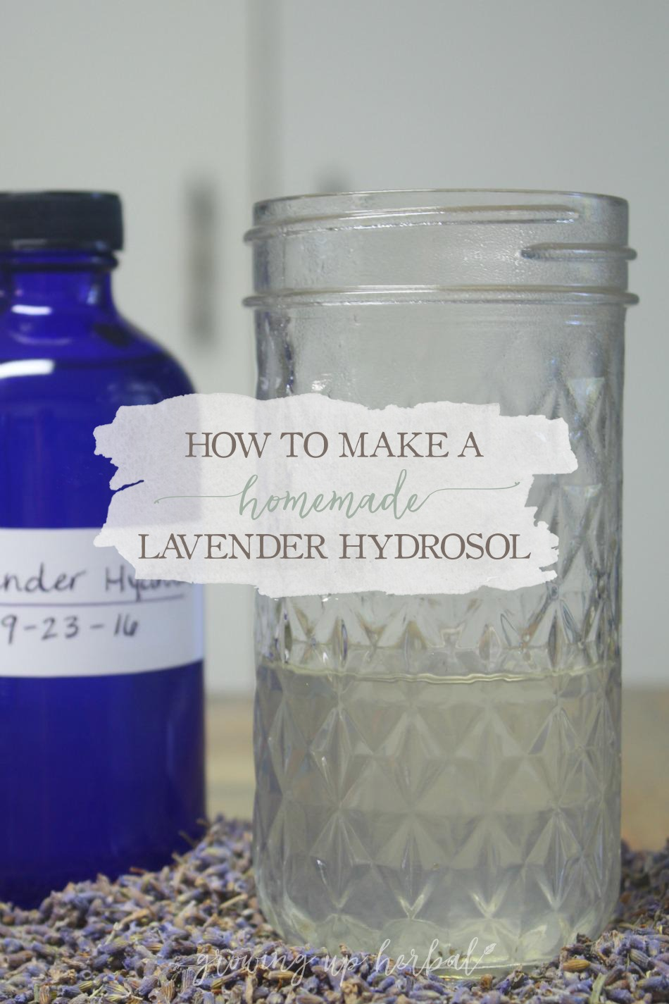 Homemade Lavender Hydrosol Tutorial | Growing Up Herbal | Learn how to make and use a homemade lavender hydrosol for better health!