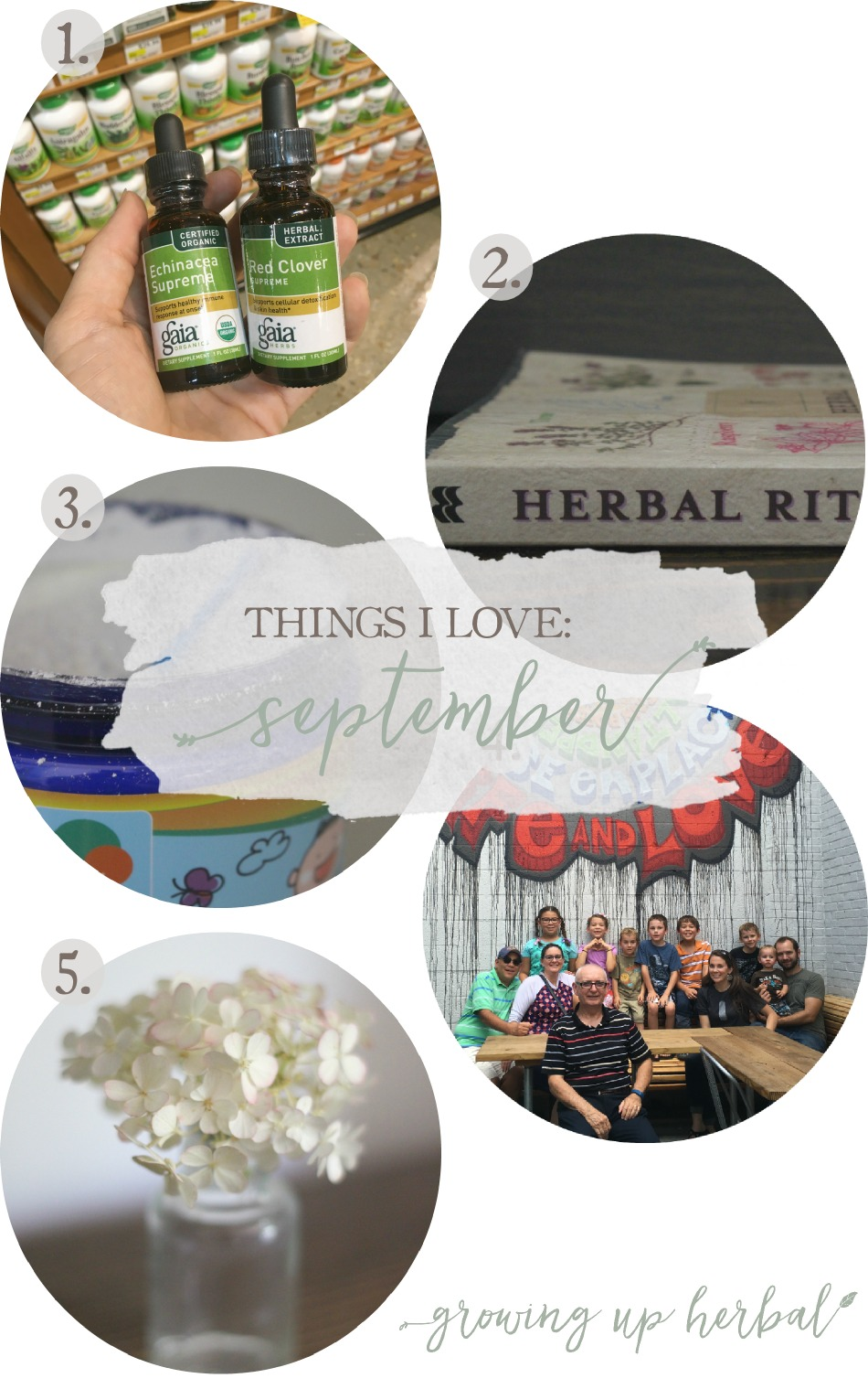 Things I Love: September 2016 | Growing Up Herbal | Here are 5 things I've loved in September 2016!