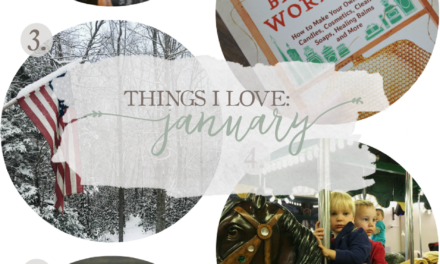 Things I Love: January 2017