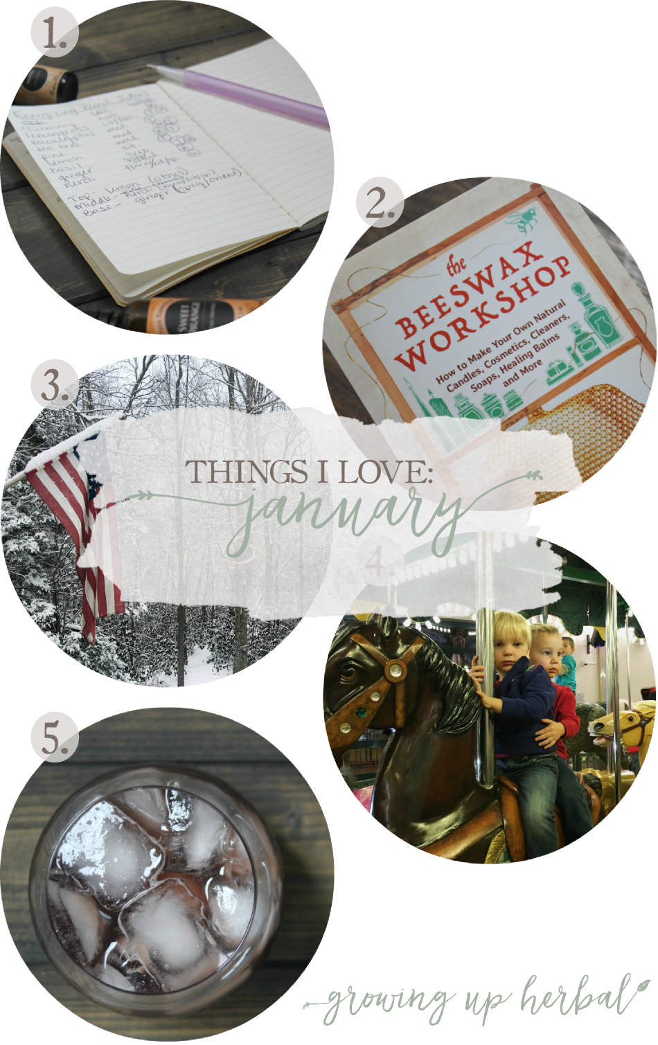 Things I Love: January 2017 | Growing Up Herbal | I'm sharing some more of my favorite things from January 2017... including essential oil blends, using leftover herbs from elderberry syrup, a blogger friends newest book, and more. Check it out!