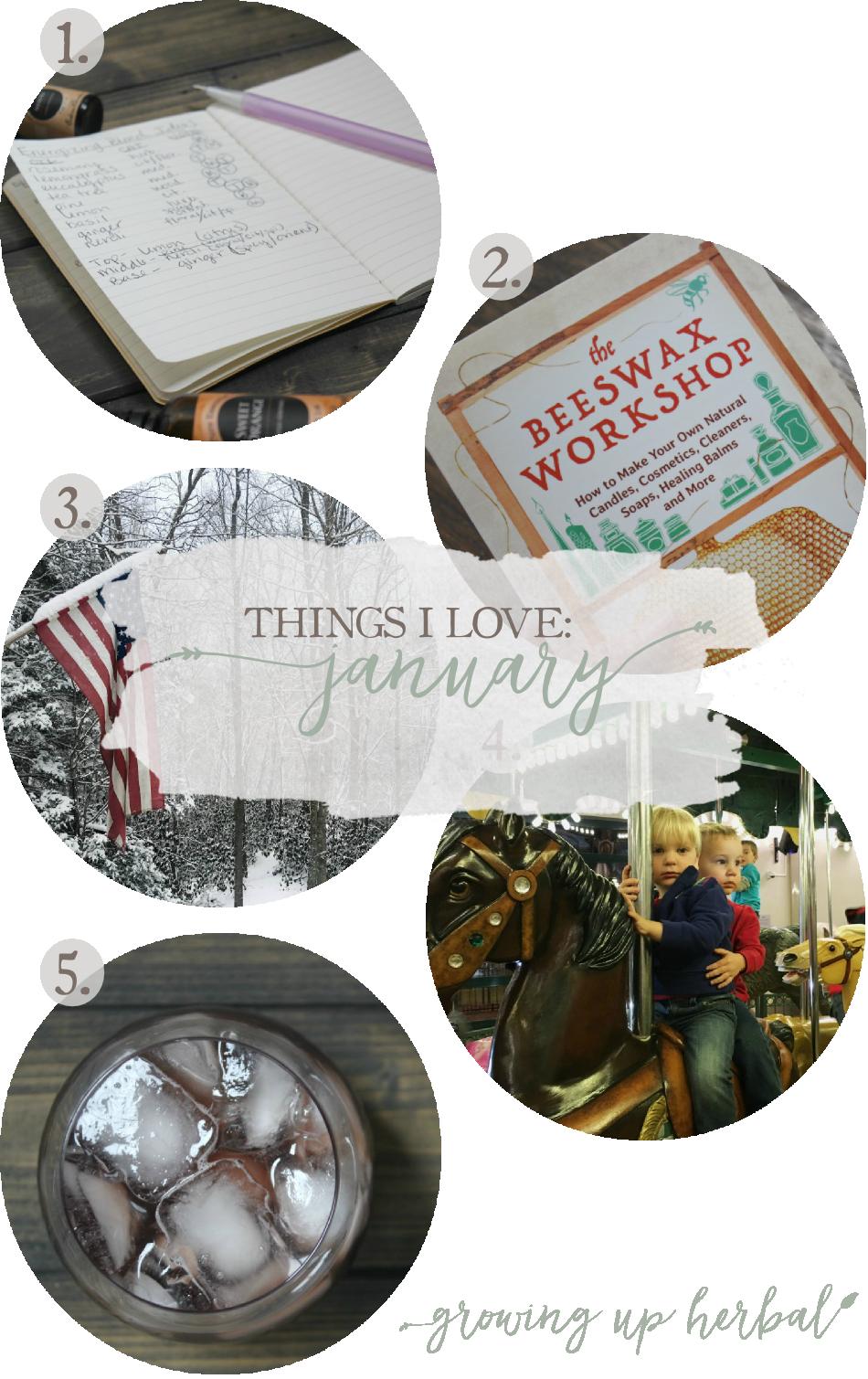 Things I Love: January 2017