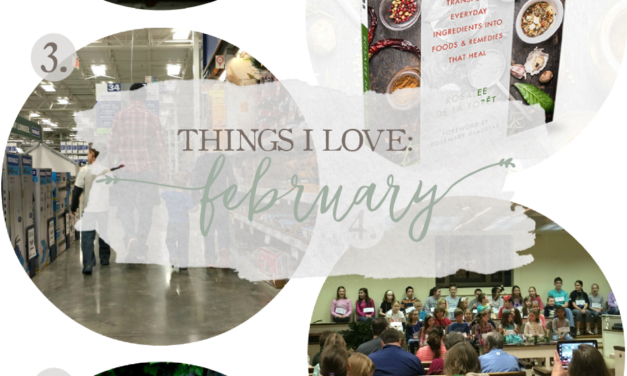 Things I Love: February 2017