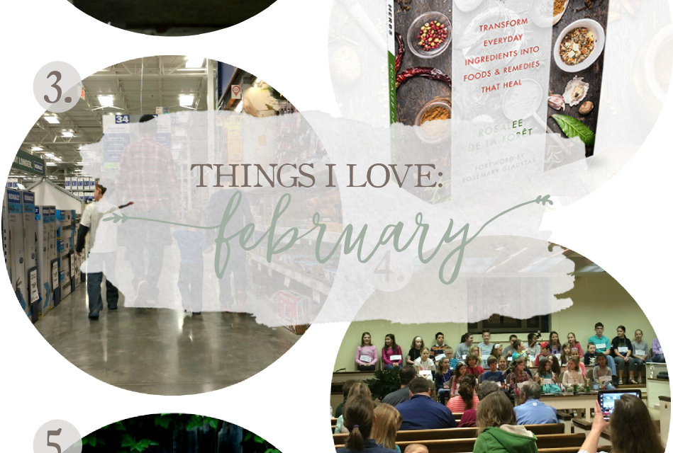 Things I Love: February 2017