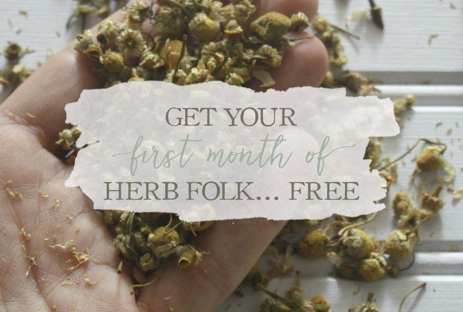 Get Your First Month of Herb Folk For FREE!