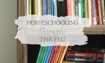 Homeschooling Through The Flu