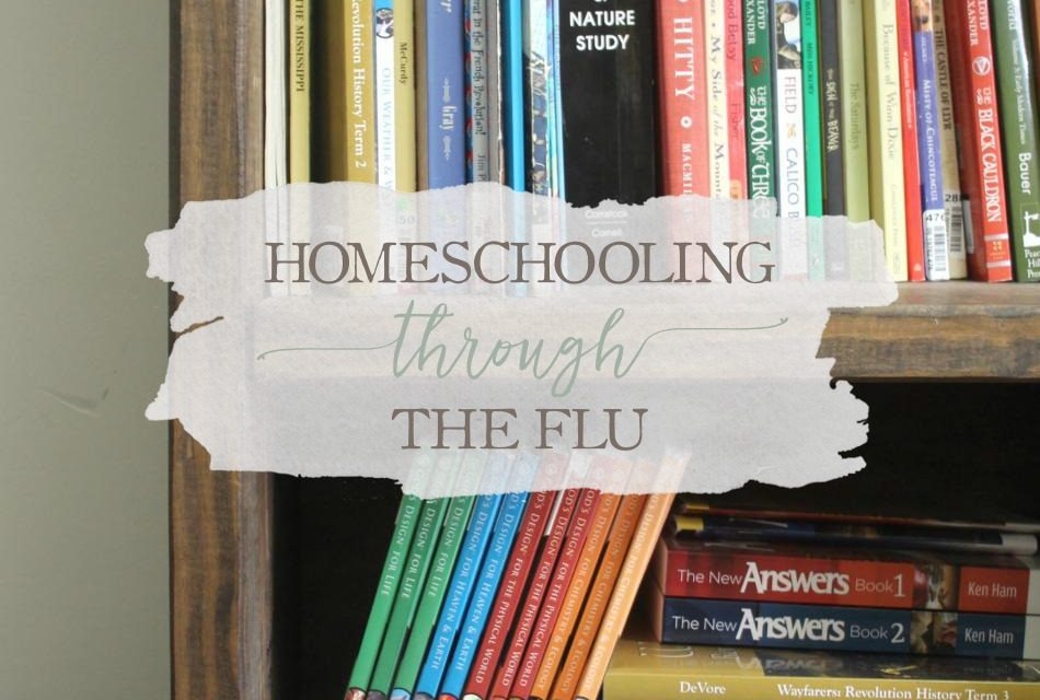 Homeschooling Through The Flu