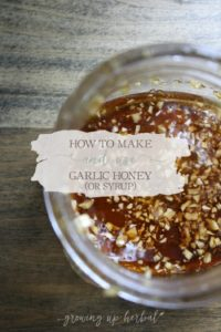 How To Make And Use Garlic Honey (or Syrup) | Growing Up Herbal | Learn how I use garlic honey for viral and bacterial illnesses and infections. It's easier than you think... and so healthy for you!