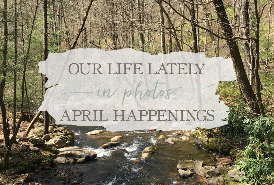 Our Life Lately In Photos: April Happenings