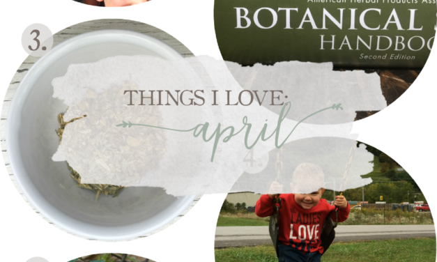 Things I Love: April 2017