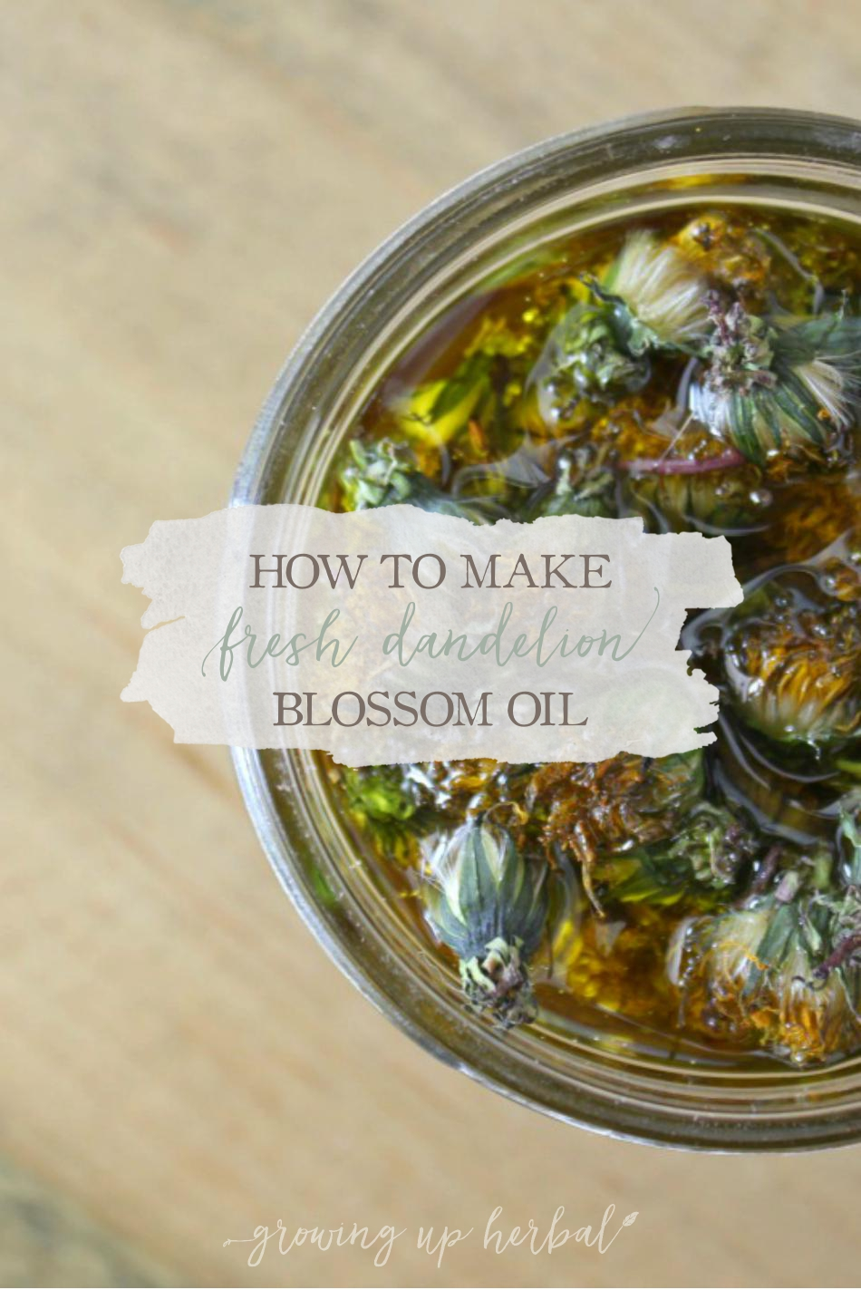 How To Make Fresh Dandelion Blossom Oil