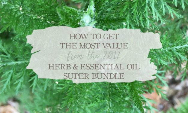 How To Get The Most Value From The 2017 Herb & Essential Oil Super Bundle