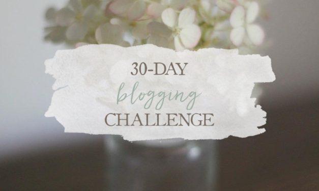 30-Day Blogging Challenge