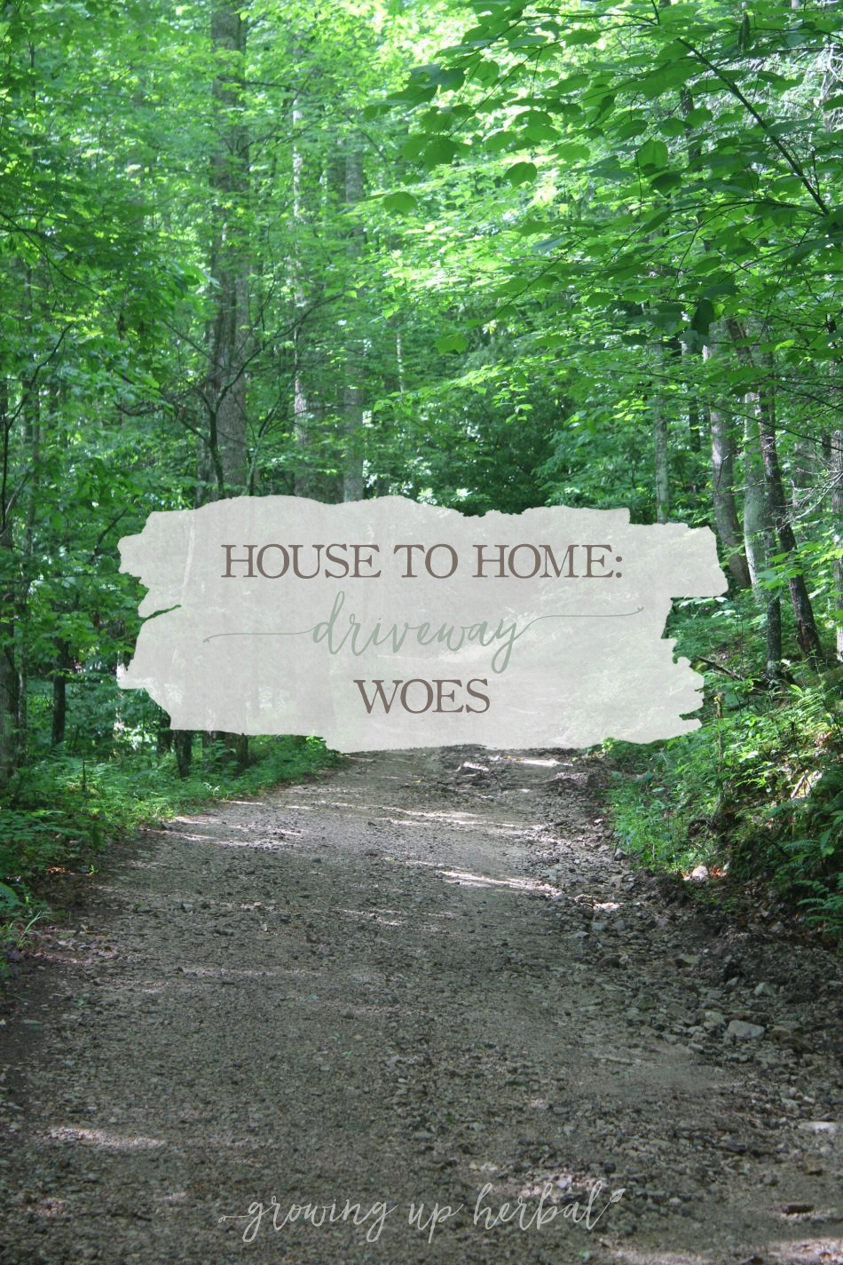 House To Home: Driveway Woes | Growing Up Herbal | I love my long mountain driveway, but there are times it causes problems.