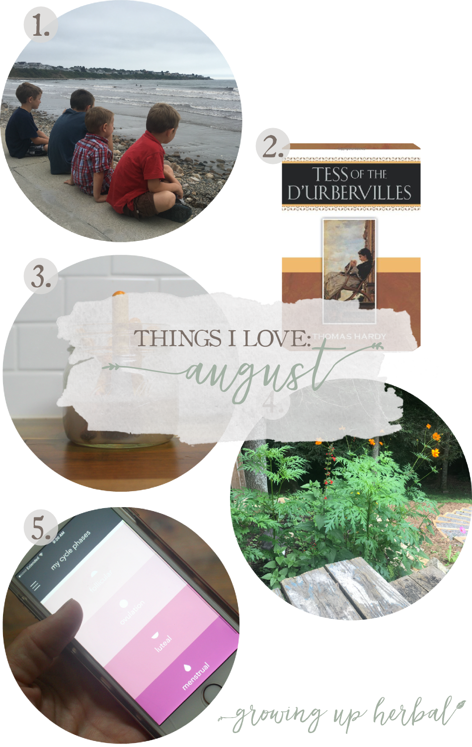 Things I Love: August 2017 | Growing Up Herbal | Maine vacations, wildflower gardens, period trackers, makeup brush cleaner, and classic books are some of the things I loved this past August!