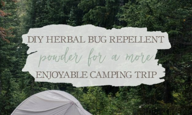 DIY Herbal Bug Repellent Powder For A More Enjoyable Camping Trip