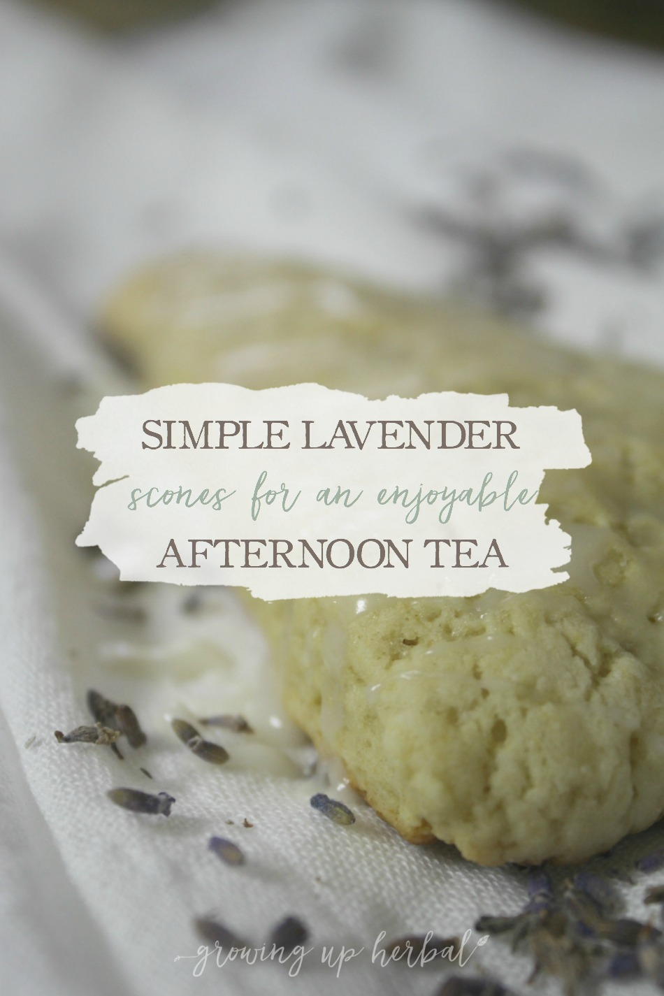 Simple Lavender Scones for an Enjoyable Afternoon Tea | Growing Up Herbal | These tasty lavender scones are easy to make and are a perfect treat for afternoon tea!