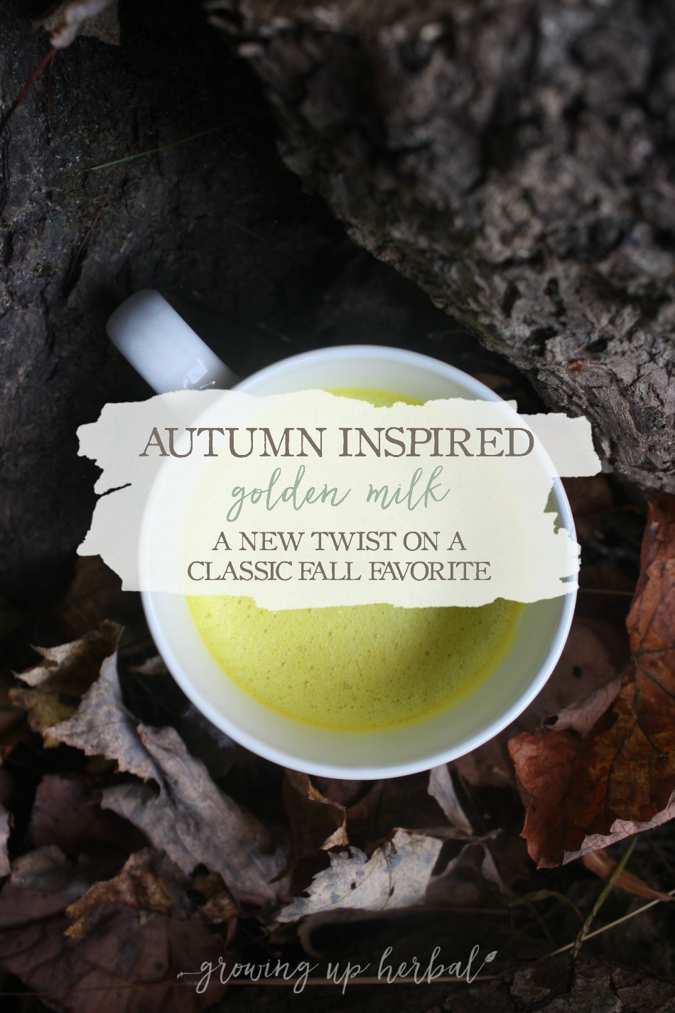 Autumn Inspired Golden Milk: A New Fall Twist On A Classic Favorite