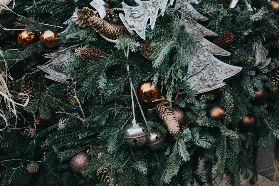 8 Winter Solstice Traditions To Start This Year   Growing Up Herbal   Learn about the Winter Solstice as well as 8 solstice traditions you can celebrate with your family this year!
