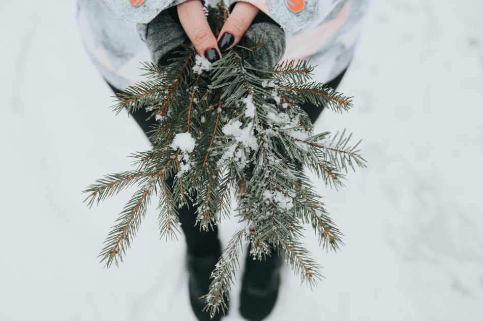 8 Winter Solstice Traditions To Start This Year | Growing Up Herbal | Learn about the Winter Solstice as well as 8 solstice traditions you can celebrate with your family this year!