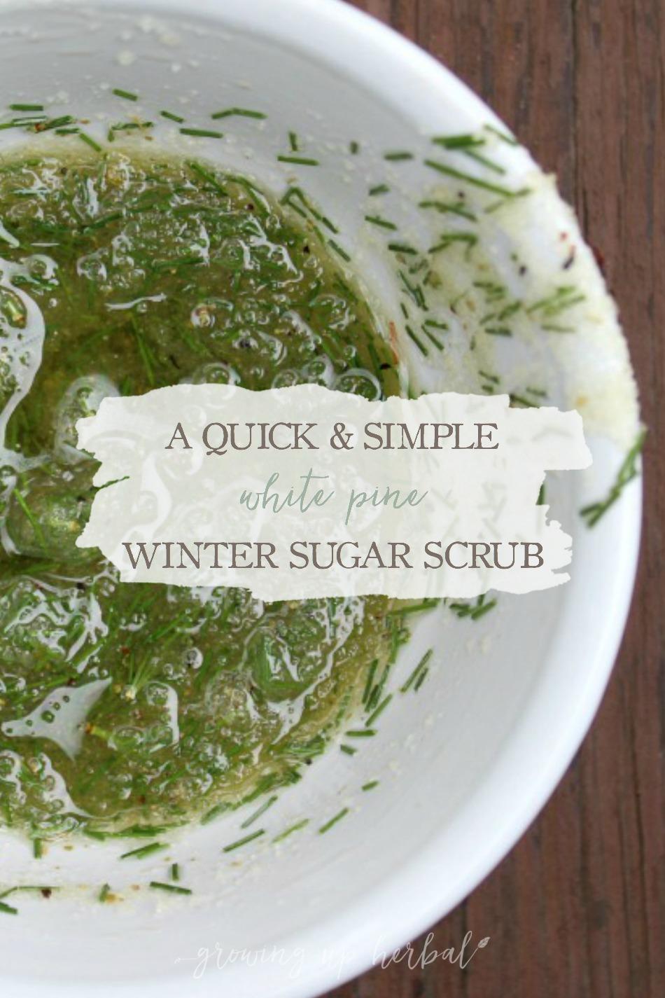 A Quick & Simple White Pine Winter Sugar Scrub