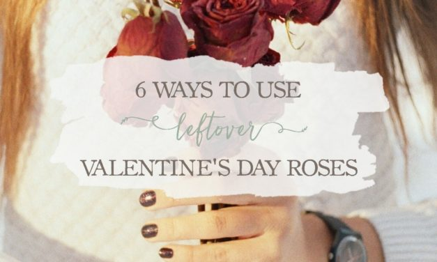 6 Ways To Use Leftover Valentine's Day Roses