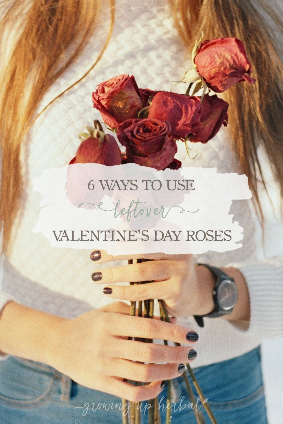 6 Ways To Use Leftover Valentine's Day Roses   Growing Up Herbal   Don't throw your roses away after Valentine's Day. Here are some ways to put leftover Valentine's Day roses to good use!