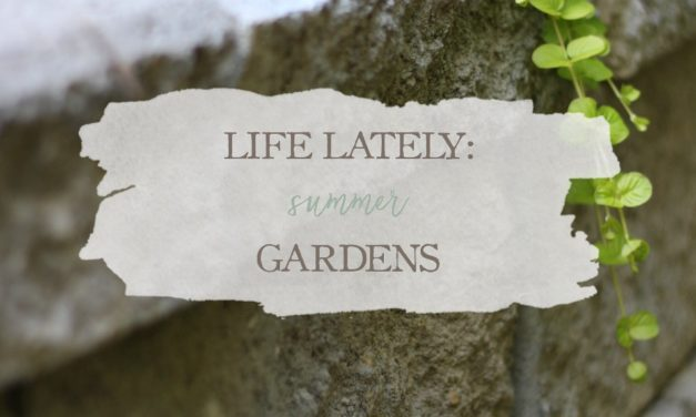 Life Lately: Summer Gardens