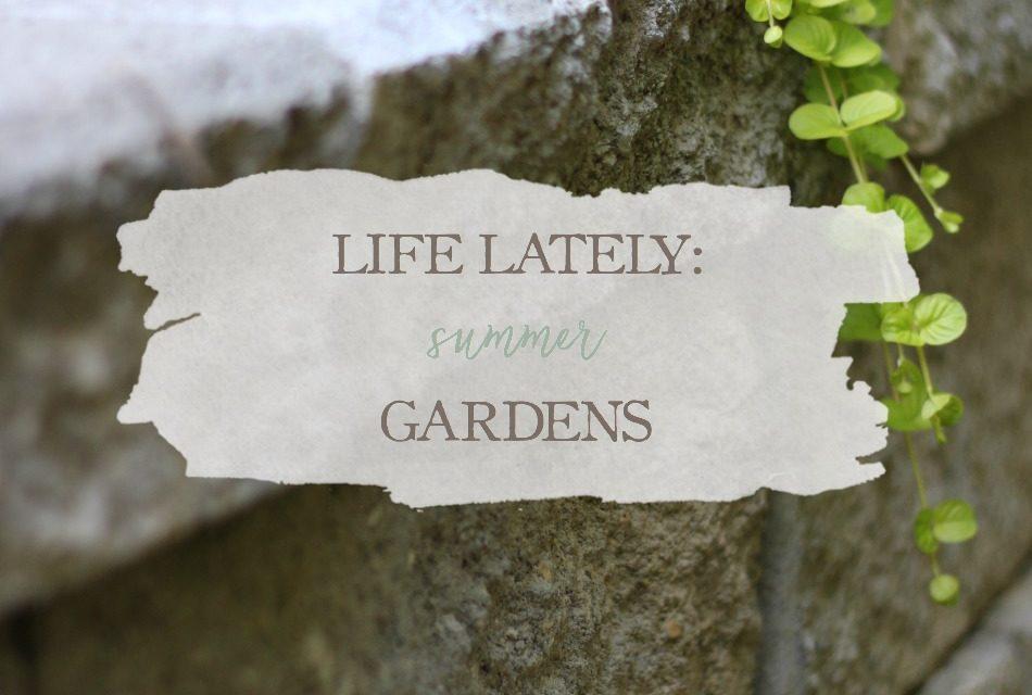 Life Lately: Summer Gardens