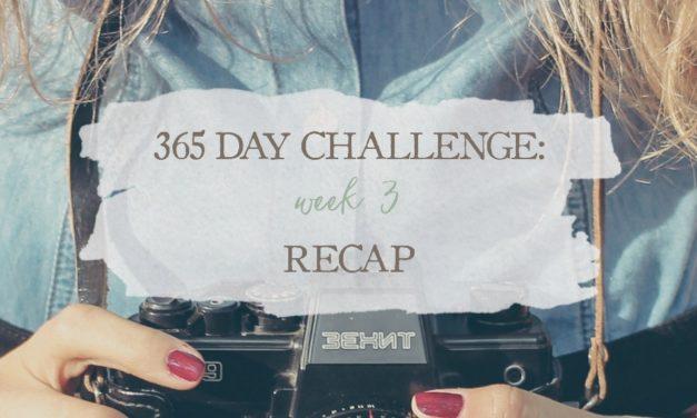 365 Day Challenge: Week 3 Recap