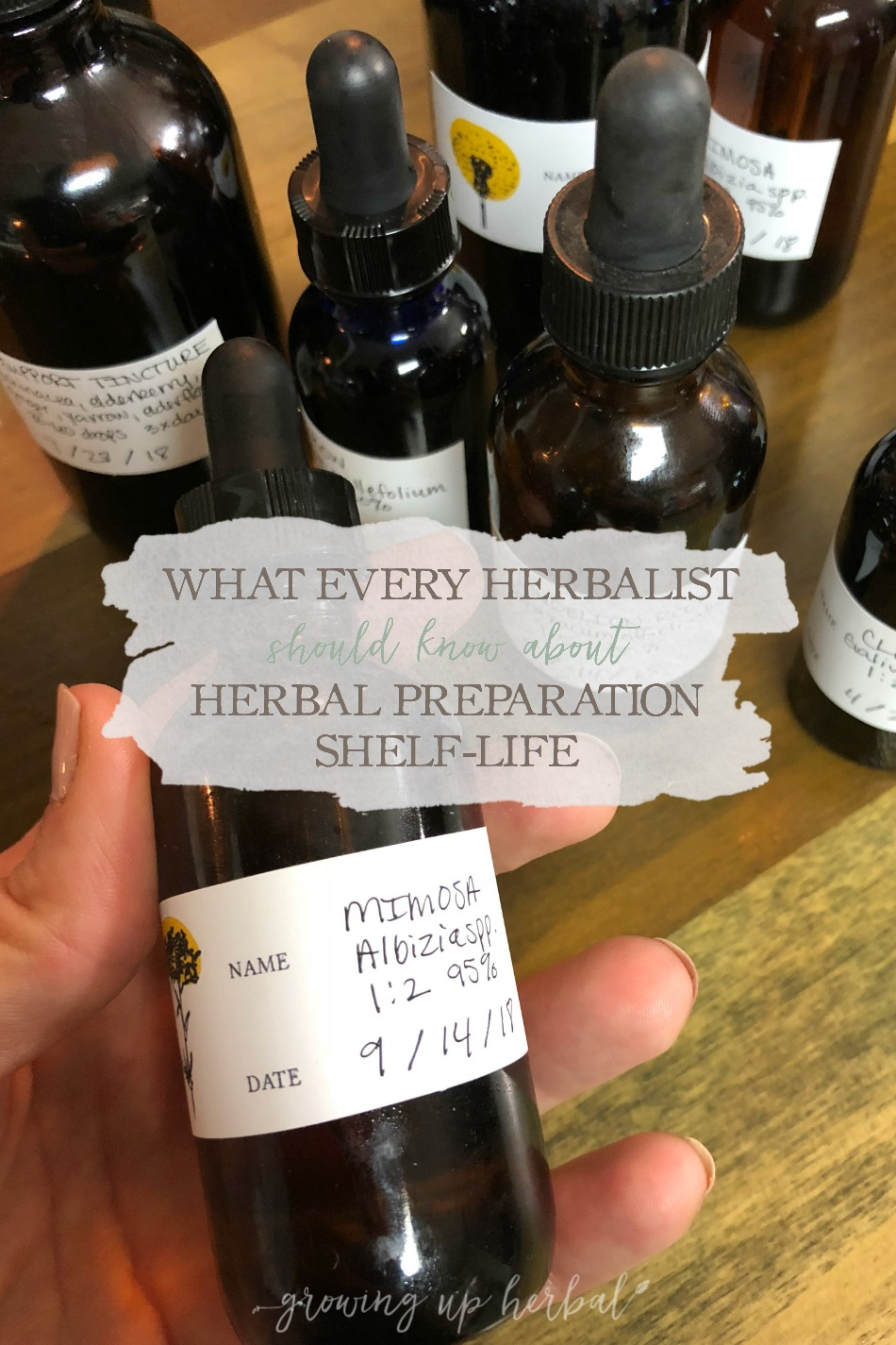 What Every Herbalist Should Know About Herbal Preparation Shelf-Life | Growing Up Herbal | Wondering if that salve, tincture, hydrosol, or other herbal preparation is still good? Here's what you need to know about herbal preparation shelf-life. Free printable included!!