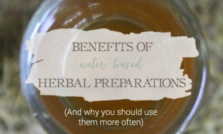 Benefits of Water-Based Herbal Preparations (And Why You Should Use Them More Often)