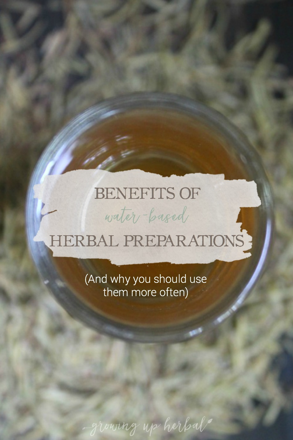 Benefits of Water-Based Herbal Preparations | Growing Up Herbal | Ever wondered what benefits you gain from teas, infusions, decoctions, and other water-based herbal preparations? This post explains it in simple terms!