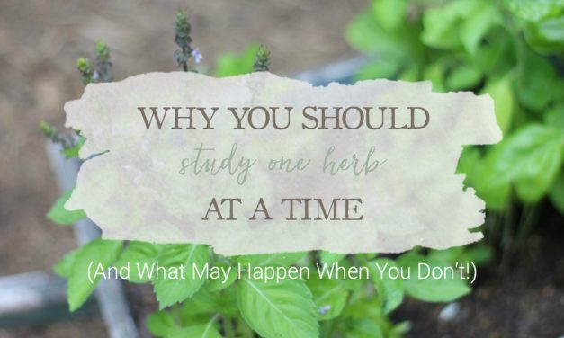 Why You Should Study One Herb At A Time (And What May Happen When You Don't!)