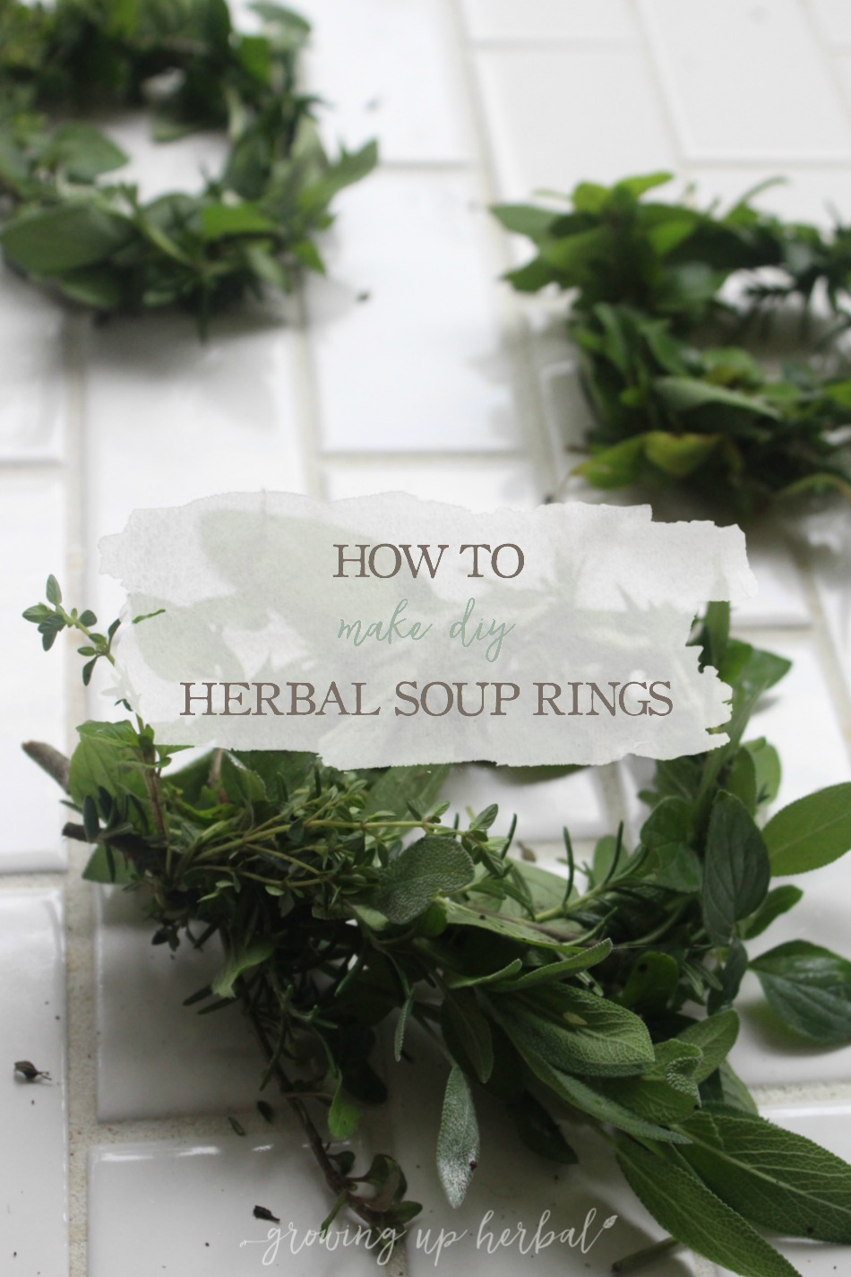 How To Make DIY Herbal Soup Rings | Growing Up Herbal | Take your water-based foods to the next level by using these herbal soup rings to amp up the flavor and nutritional benefits! Learn to make them in this post.