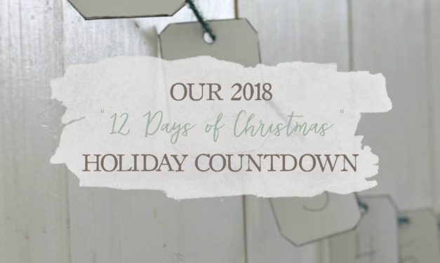 "Our 2018 ""12 Days of Christmas"" Holiday Countdown"